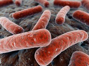 bak-infekciya-300x225