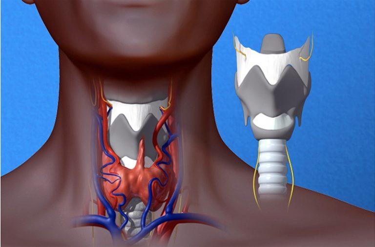Перстнечерпаловидные суставы хламидийные инфекции коленного сустава