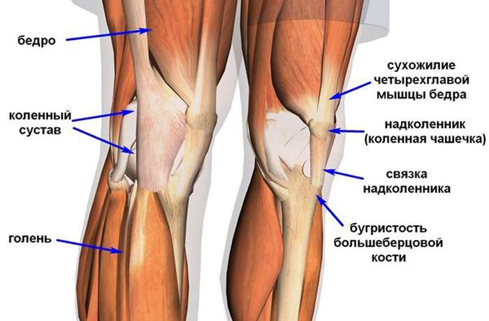 Растяжение боковых связок коленного сустава
