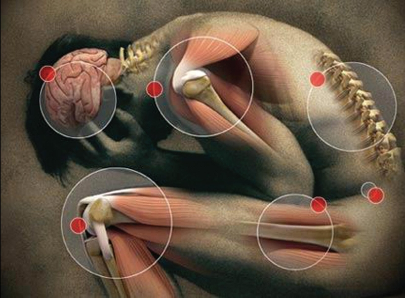 Психосоматика болей в суставах суставер инструкция